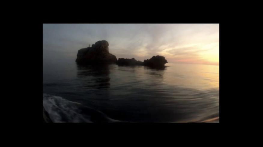 Inmersión Nocturna en ZOEA Mallorca