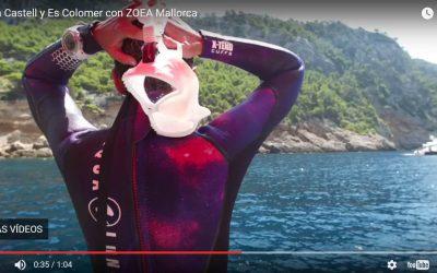 Inmersión en Cala Castell y Es Colomer ZOEA Mallorca