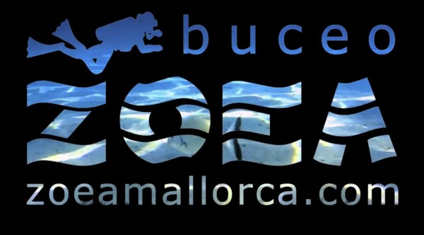 Pez Luna en El Toro, Mallorca