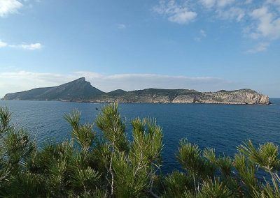 Diving Tauchen Mallorca Views0011 400x284